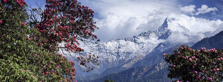 nepal-blog-destination-management-inc-dmi-nepal-best-trips-nepal-visit-nepal