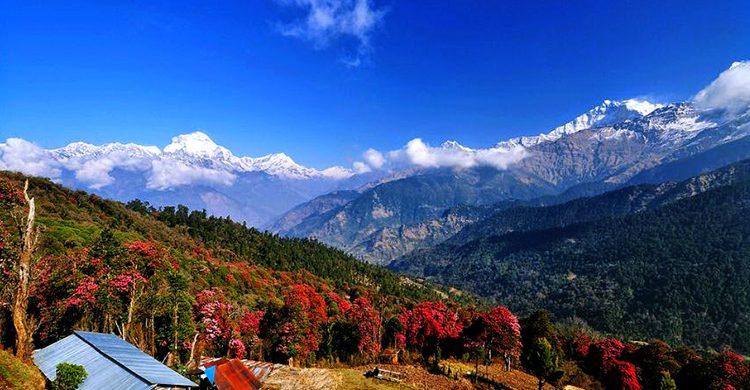 annapurna-base-camp-trek-dmi-nepal-destination-management-inc-nepal-best-holiday-trips-photos