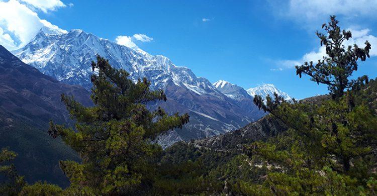 annapurna-three-annapurna-circuit-trial-dmi-nepal